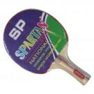 Pingpongová pálka na stolní tenis TIGER