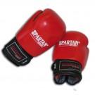 Boxovací / Boxerské rukavice 8, 10, 12, 14 oz